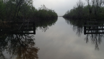 KRVSA Annual Lake Clean up and Airboat Raffle – frostproof
